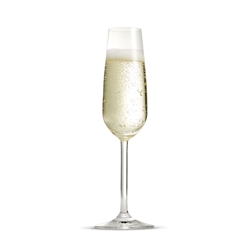 AVIGNON Champagne Flutes - Set of 8