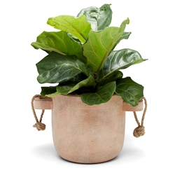 ORIGIN Planter - Natural