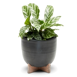 ORIGIN Planter - Black