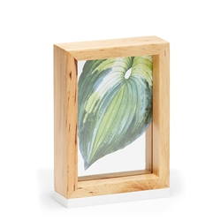 WINDOW Photo Frame = 5x7""