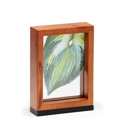 WINDOW Photo Frame - 5x7""