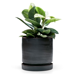 ELEMENT Planter - Black - Large