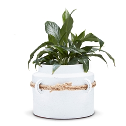 LITHIC Floor Planter - White